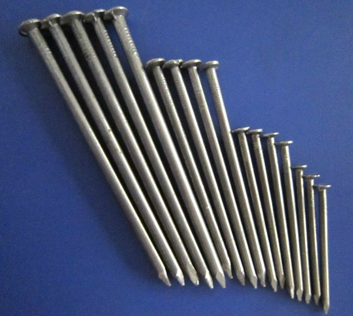 Polished Common Round Wire Nails Galvanized For Wooden